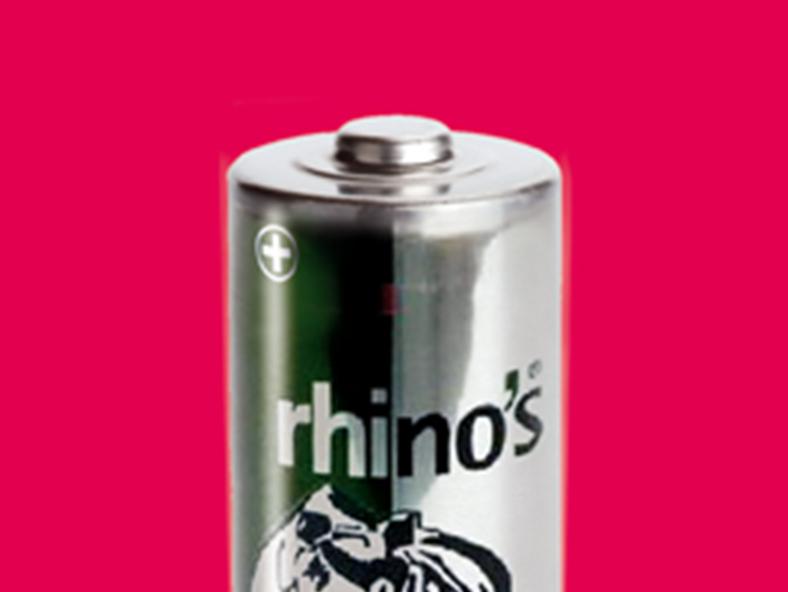 Beitragsbild_Rhinos